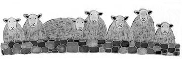Moorland Pottery Herdwick Sheep Mug Gift Boxed-1039