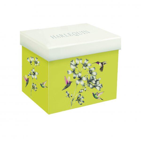 Harlequin Amazilia Gooseberry Gift Boxed Mug-2045