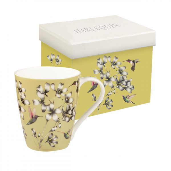 Harlequin Amazilia Gooseberry Gift Boxed Mug-0