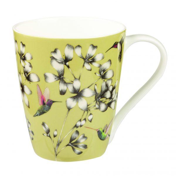 Harlequin Amazilia Gooseberry Gift Boxed Mug-2044