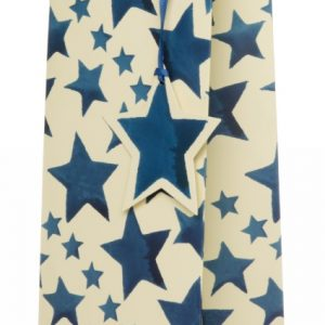Emma Bridgewater Blue Stars Bottle Gift Bag-0