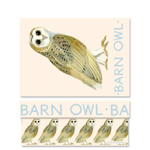 Emma Bridgewater Forest Animals Barn Owl Medium Gift Box-0