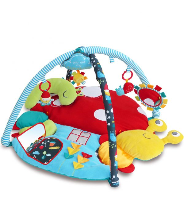 Little Bird Told Me My Little Sunshine Multi-Activity Playgym Playmat -0