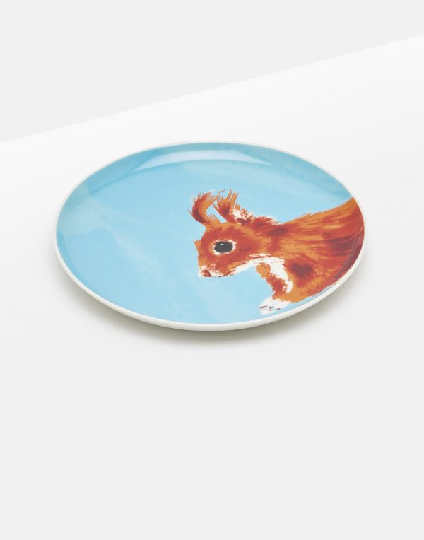 Joules Wild Thing Squirrel Tea Plate Gift Boxed-0