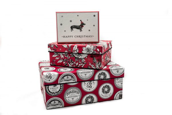 Alice Scott Nest of 3 Gift Boxes, Dashing Dogs, Botanical & Pomande-3148