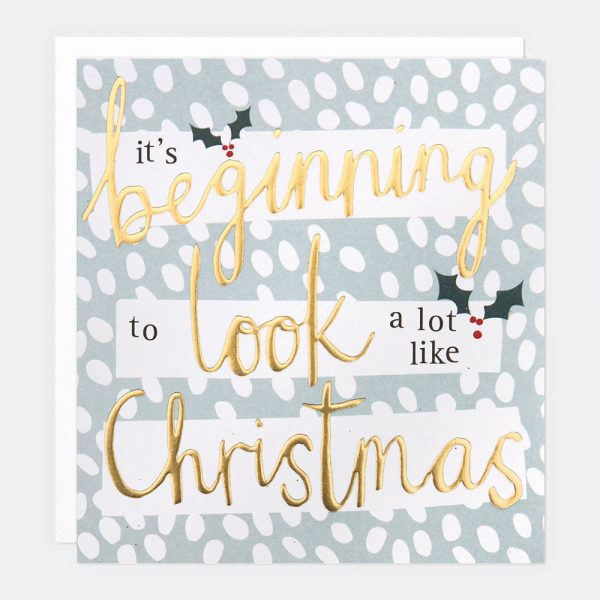 Caroline Gardner Dotty Holly Christmas Cards Pack of 5-0
