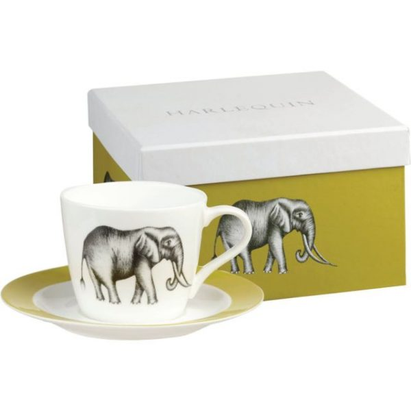 Harlequin Savanna Tea Cup & Saucer Gift Boxed-0