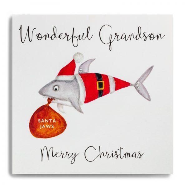 janie wilson grandson christmas card
